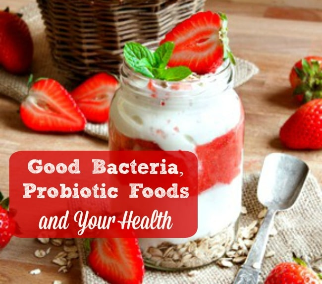 10 Things to Know About Probiotic Foods and Your Health - Your gut health and the probiotics in your diet can make a tremendous difference in your health. Here are 10 things to know and do when it comes to your diet, probiotcs and health. Healthy diet | Healthy living | Good bacteria