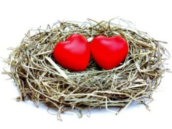 10 Ways to Get Ready for the Empty Nest – Because It's Never Too Early to Start!