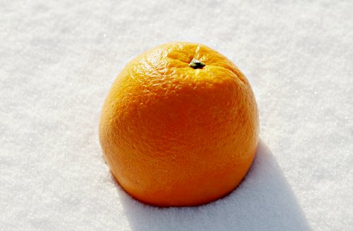Orange in snow - winter self-care tips for women
